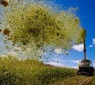 Fusione Bayer-Monsanto, un disastro da evitare per l'agricoltura mondiale