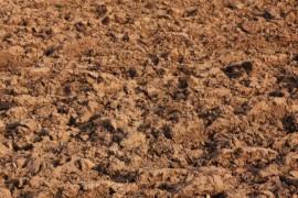 Decreto ponte di Genova: pericoloso innalzamento del livello di idrocarburi sversabili in agricoltura