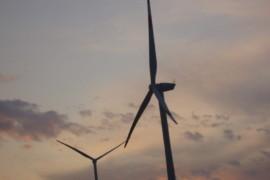 Prime dichiarazioni del superministro Cingolani: ma quale transizione ecologica?!?